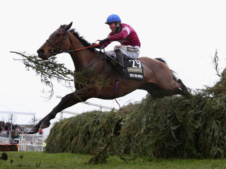Rule The World 2016 Grand National winner.