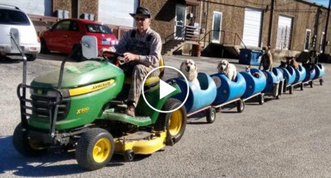 Homem De 80 Anos Cria Carruagens Para Passear Os Vários Cães Abandonados Que Resgatou http://www.funco.biz/homem-80-anos-cria-carruagens-passear-varios-caes-abandonados-resgatou/