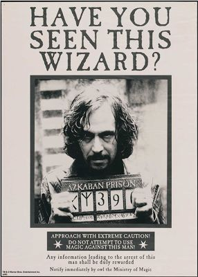 Mundo Harry Potter: HAVE YOU SEEN THIS WIZARD?
