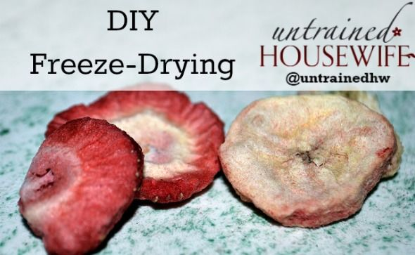 DIY freeze-dried foods (without dry ice)