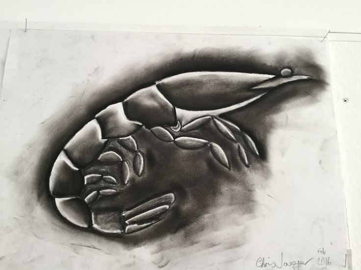 This one is a charcoal and white pencil creation.