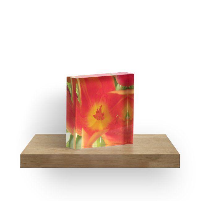 ein bunter Blütentraum, Tulpen, Tulpe\u0027 Acrylblock by rhnaturestyles - wohnzimmer rot orange