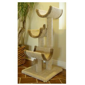 iu0027m learning all about majestic pet products kitty cat jungle gym at - Cat Jungle Gym