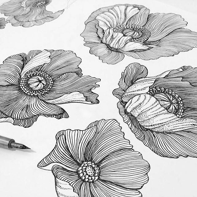 Poppies  New print coming to the #patternbank shop soon…