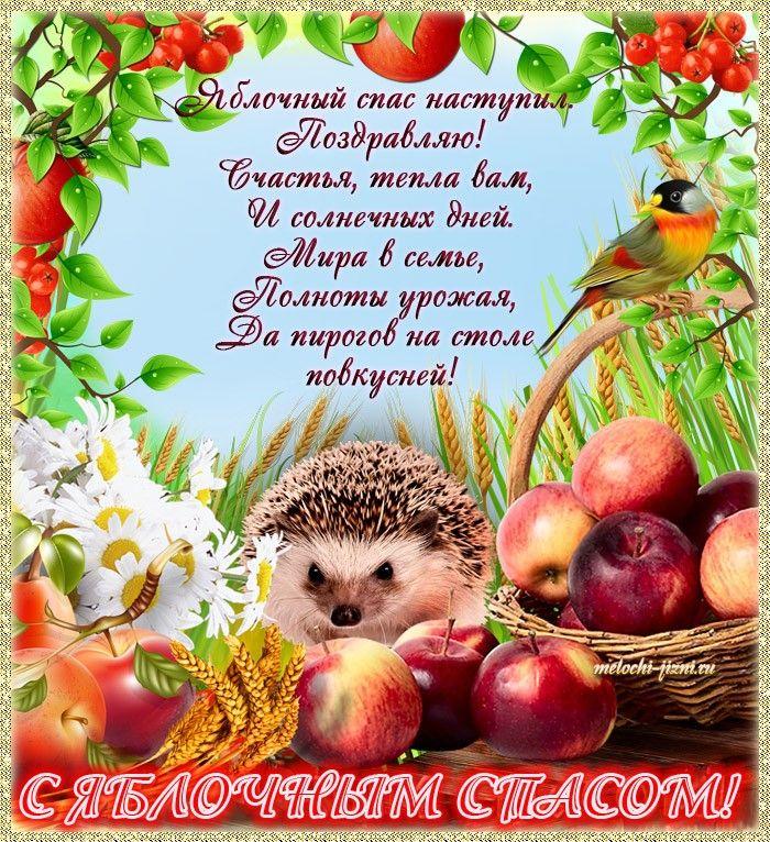 поздравление с яблоком в стихах папы россии