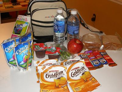 Image result for disney world backpack with food