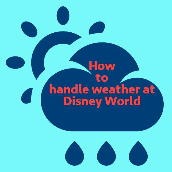 It's not unusual for a Disney World forecast to be plastered with a variety of weather conditions that could potentially have an impact. Here's info to help you plan.