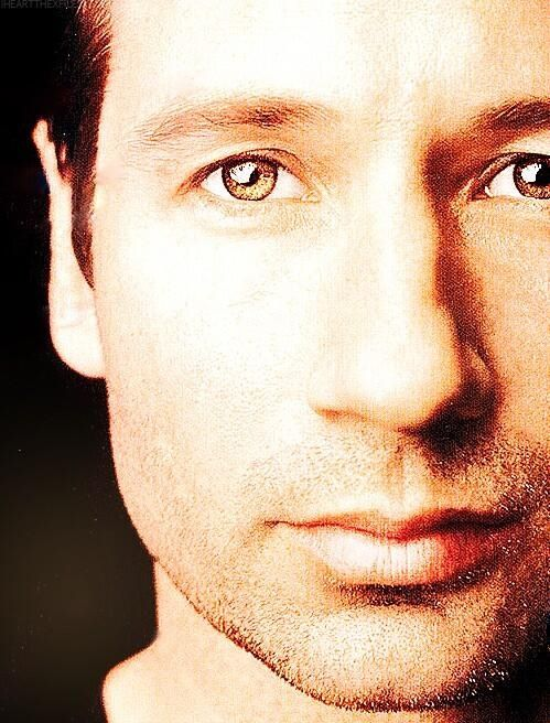 Up close. David Duchovny