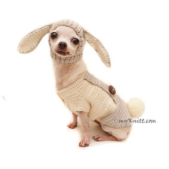 Easter Pet Clothes, Peter Rabbit Costume Pet, Bunny Dog Hat, Bunny Dog Snood, Crochet Dog Sweater DF152 by Myknitt