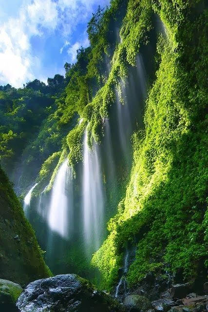 Madakaripura Waterfall Probolinggo East Java. Indonesia - Visit http://asiaexpatguides.com and make the most of your experience in Asia! Like our FB page https://www.facebook.com/pages/Asia-Expat-Guides/162063957304747 and Follow our Twitter https://twitter.com/AsiaExpatGuides for more #ExpatTips and inspiration!