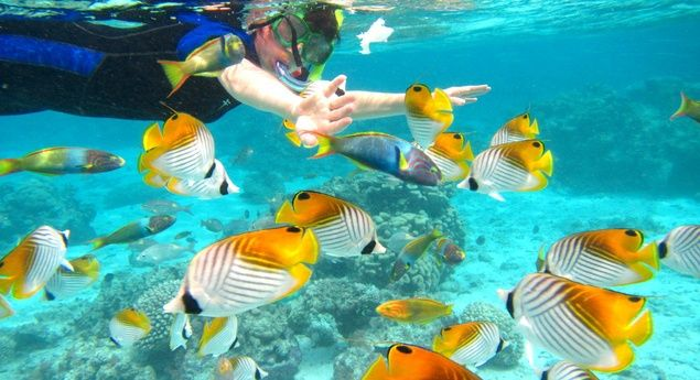Once a year go someplace, you've never been before with the best tours operators, get the details @ http://goo.gl/Wt3zOw