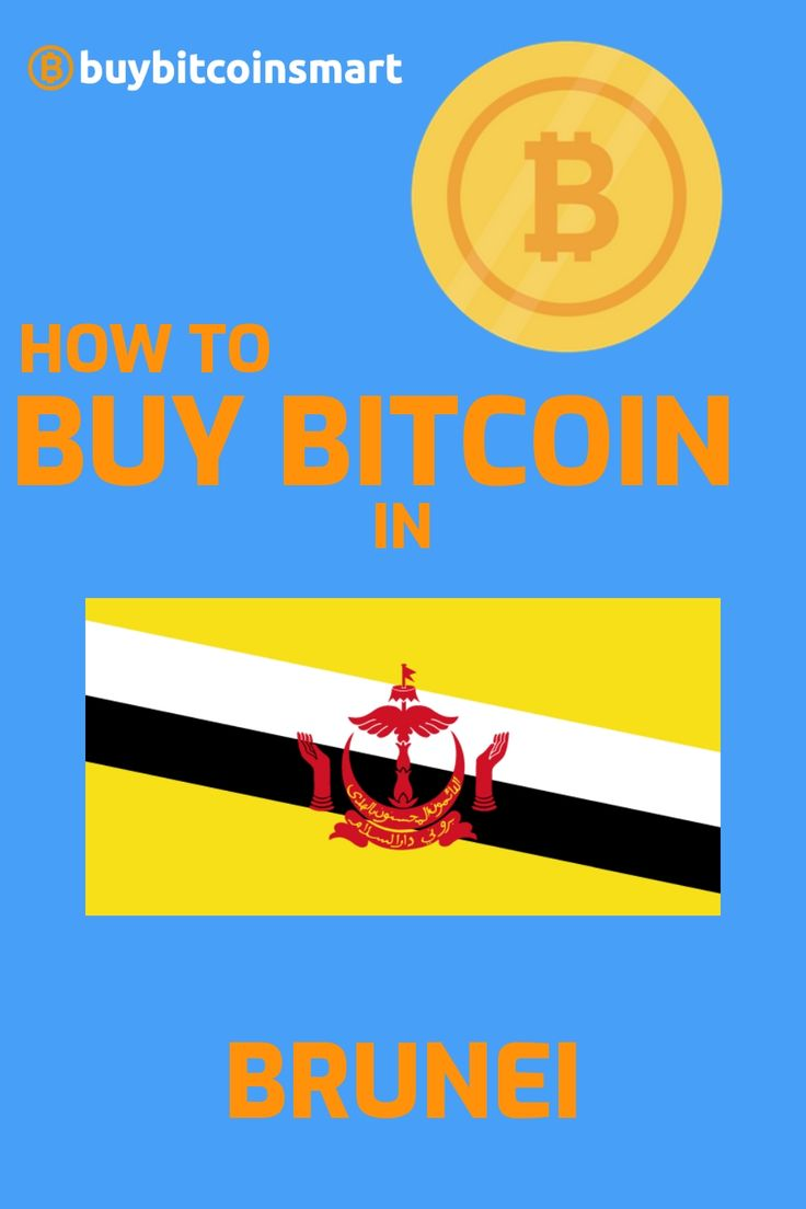 Find the best cryptocurrency exchanges to buy bitcoin in Brunei. Read our step-by-step guide and find the best crypto exchanges to purchase BTC safely. Do you already hold bitcoin or any other cryptocurrency? What's your largest holding? Drop a comment! #buybitcoinsmart #bitcoin #crypto #buybitcoin #hodl #brunei #bitcoinbrunei #cryptobrunei #cryptocurrency #btc