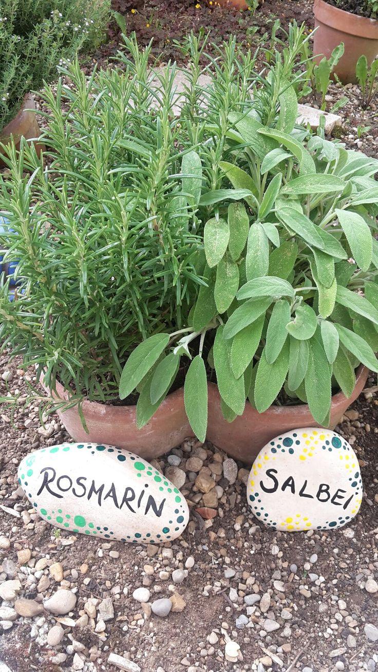 Superb Kr utergarten Rosmarin Salbei DIY Handmade Steine bemalen Dekoration Garten