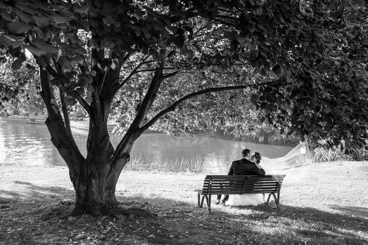 Park bench Royal Botanic Gardens Melbourne