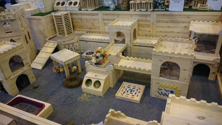 Amazing set up for guinea pigs or rabbits