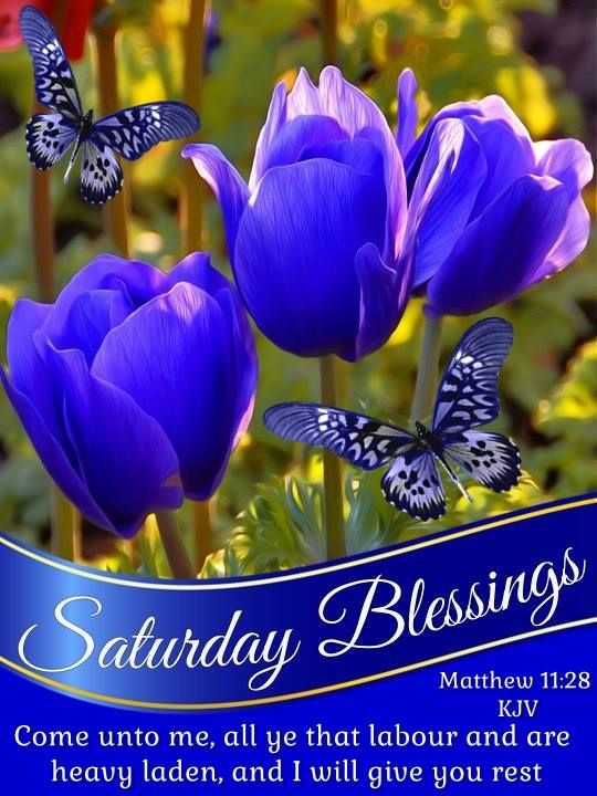 Saturday Blessings.Matthew 11:28- KJV
