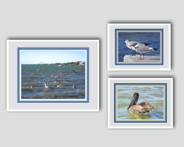 SHORE BIRDS WALL GROUPING Will take you right into my website for ongoing savings and ideas. Sign up TODAY.