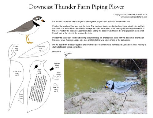 Piping Plover Pattern