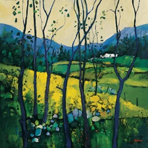 Art Prints Gallery - Springtime, Galloway (Limited Edition), £125.00 (http://www.artprintsgallery.co.uk/Davy-Brown/Springtime-Galloway-Limited-Edition.html)