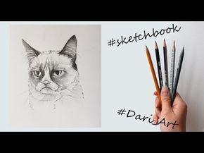 Рисуем скетчи! Угрюмый кот простым карандашом! #Dari_Art - YouTube