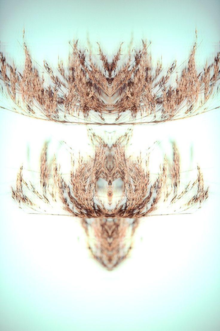 Psychedelic ears / Mask 01_roberta cleopazzo