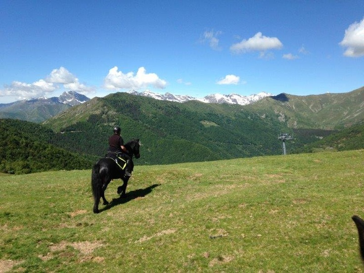 Horse riding in the mountain. Oasi Zegna - Equitazione, #Italy