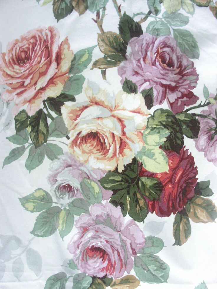 Buy One Get One Free Curtains Cabbage Rose Carpet