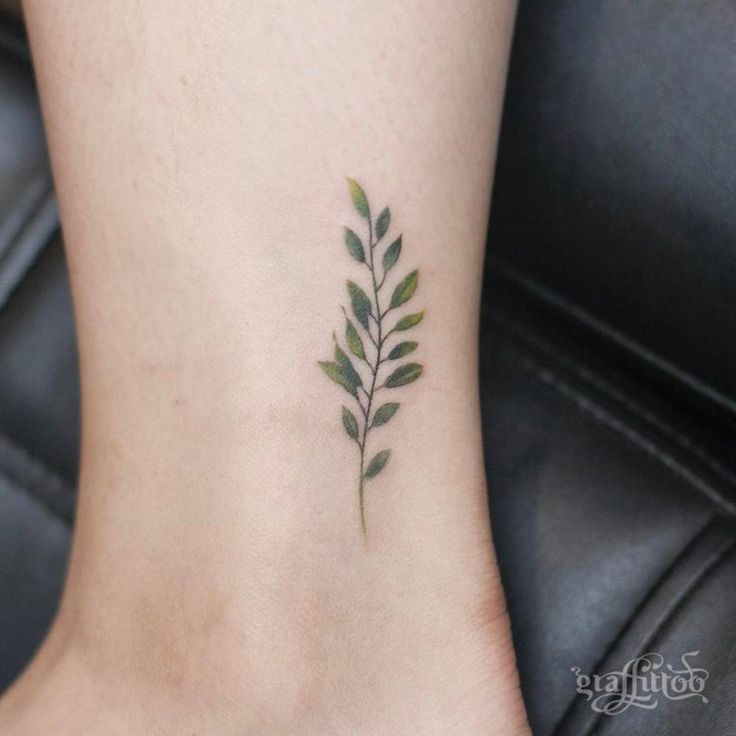 Branch tattoo on the ankle.