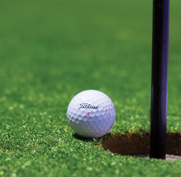 Perfect Golf Putting Mats and Turf.  See our big selection to choose from.