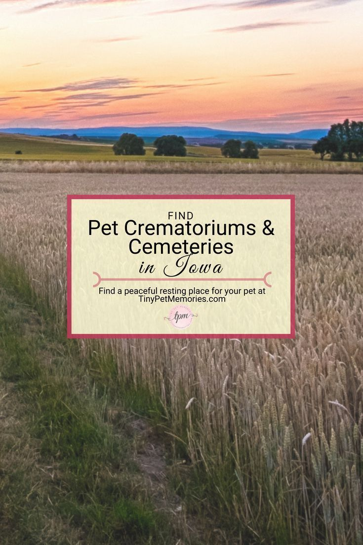 Sayinggoodbye To Your Pet Is Hard Enough Finding A Petcemetery Or Petcrematorium In Iowa Shouldn T Be Check Out Tinypetmemo Cemeteries Pet Cemetery Pets