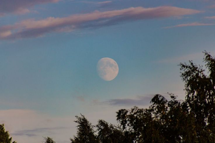 Fly Me To The Moon by Carl Hult