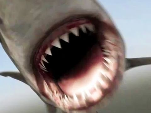 Mega Shark Vs. Crocosaurus - Official Trailer [HD] terrible graphics and erkle or however you spell it is in this movie lol