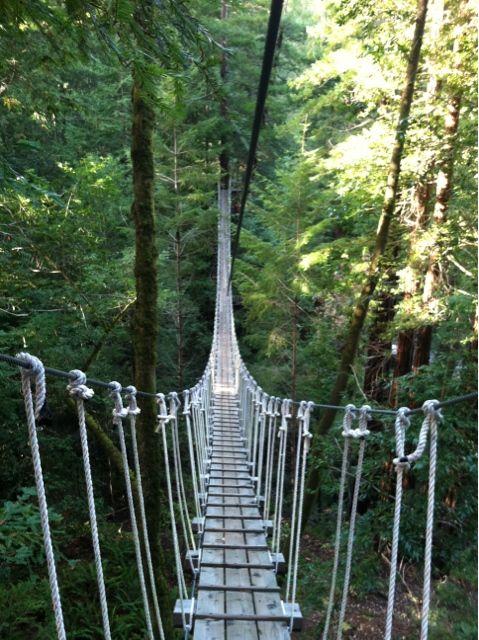 Northern California Sonoma Canopy Tour remember when in Sonoma!!! |
