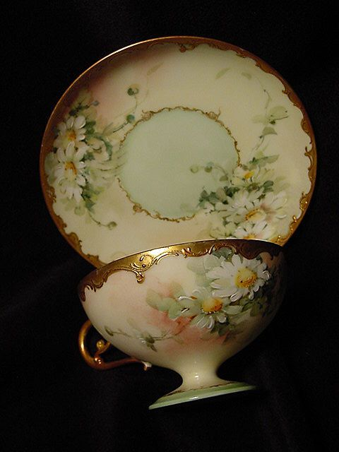 What a pretty design!             Limoges daisies cup & saucer  theporcelainkingdom