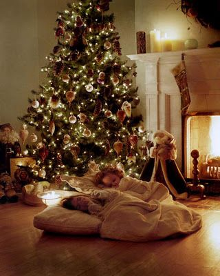 Sleeping next to the Christmas tree waiting for Santa....brings back memories of childhood.