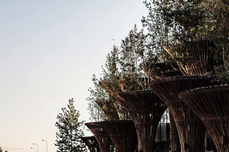 Expo - Padiglione del Vietnam - Milano 2015 - #buildings #expo #Milano #fotografia #bamboo