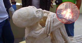 Conspiracy Feeds: Περού: Απολιθωμένο ον προβληματίζει τους επιστήμον...
