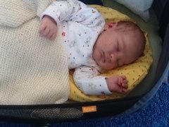 topponcino why it works and why you should use one for your newborn