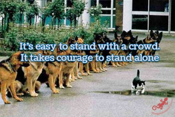 It's easy to stand with a crowd. It takes courage to stand alone.  #easy #stand #crowd #alone #quotes  ©The Gecko Said - Beautiful Quotes - www.thegeckosaid.com