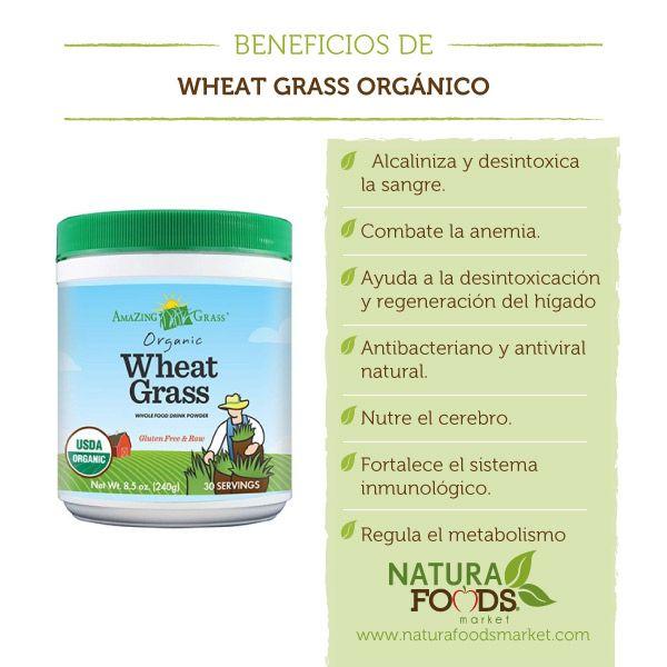 El Wheatgrass (zumo de pasto de trigo) es un superfood completo que contiene todo el complejo de vitaminas y minerales necesarios para el buen funcionamiento y mantenimiento de la salud y el bienestar.  Adquiere este producto aquí: http://naturafoodsmarket.com/producto/superfoods/wheat-grass-organico-8-5-oz/