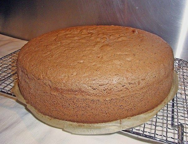 Шустрый повар.: Шоколадный бисквит