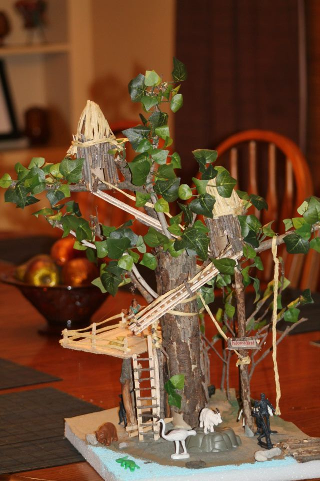 project for my son's 5th grade book report. Swiss Family Robinson tree house.  it was fun!!!