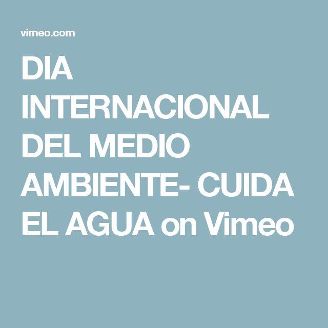 DIA INTERNACIONAL DEL MEDIO AMBIENTE- CUIDA EL AGUA on Vimeo