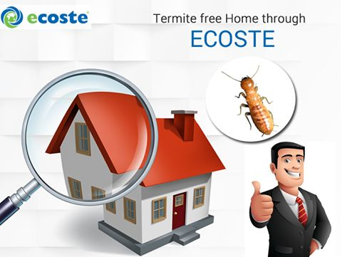 Experience ‪#‎Termite‬ free ‪#‎Home‬ with the help of Ecoste