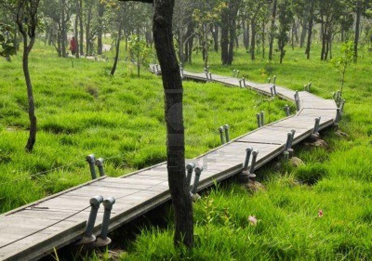 Pa Hin Ngam National Park Chaiyaphum in Thailand