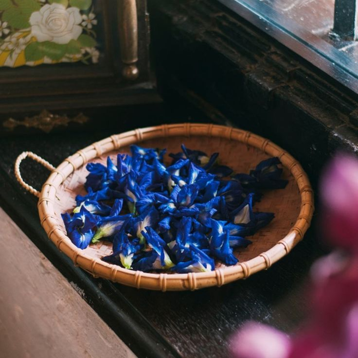 In Southeast Asia, the same butterfly pea flower that gives us our natural indigo hue has been used for centuries in  cooking. In Malaysia, it's often used when making traditional Nyonya kueh.  -  #butterflypeaflower #allnatural #traditional