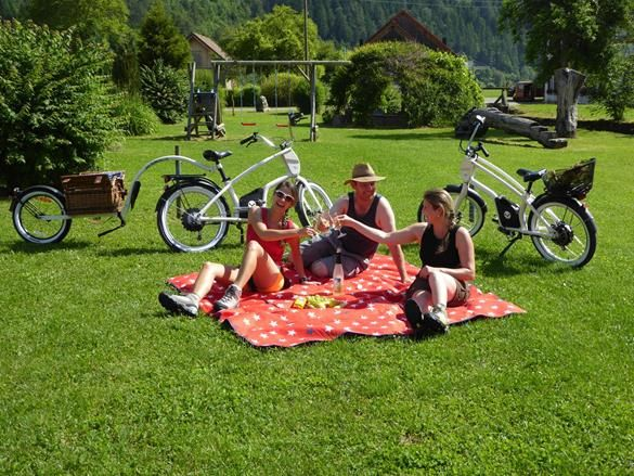 Auch im Donautal gibt es ein tolles Angebot an YouMo zum mieten
