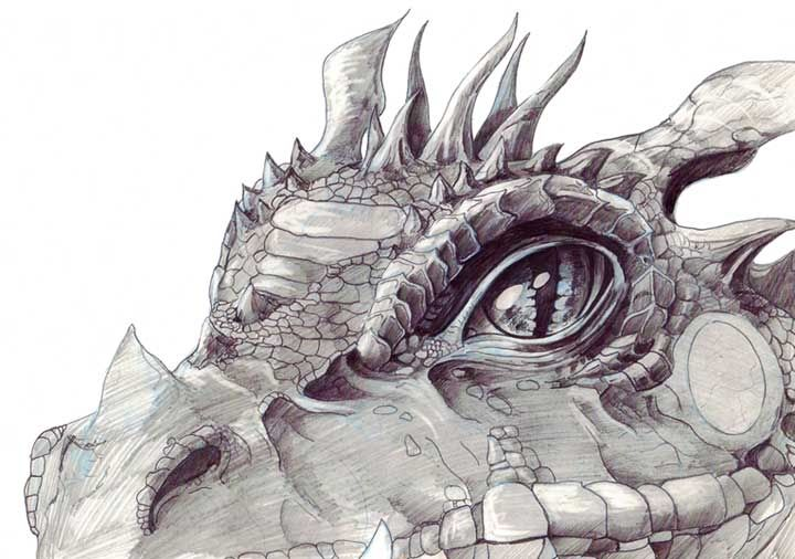 Pencil Drawings Dragon Heads Pictures | Dragon | Pinterest ...
