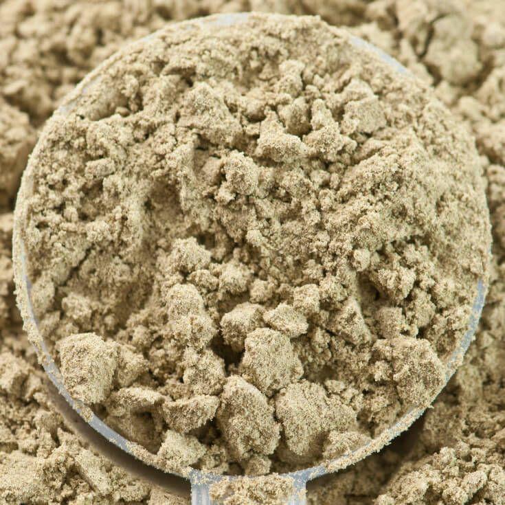 Hemp Protein Powder: The Safest Plant-Based Protein Option