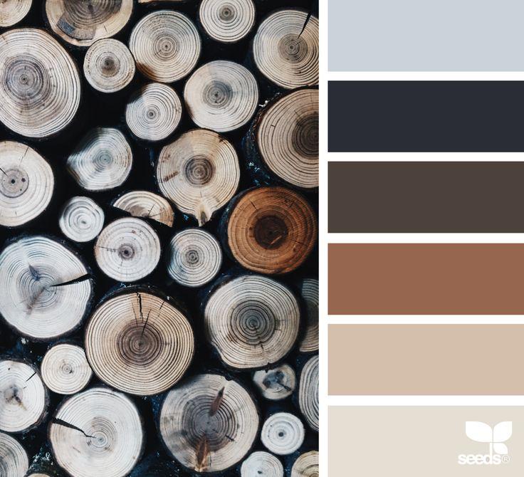 Best 25+ Rustic Color Palettes Ideas On Pinterest
